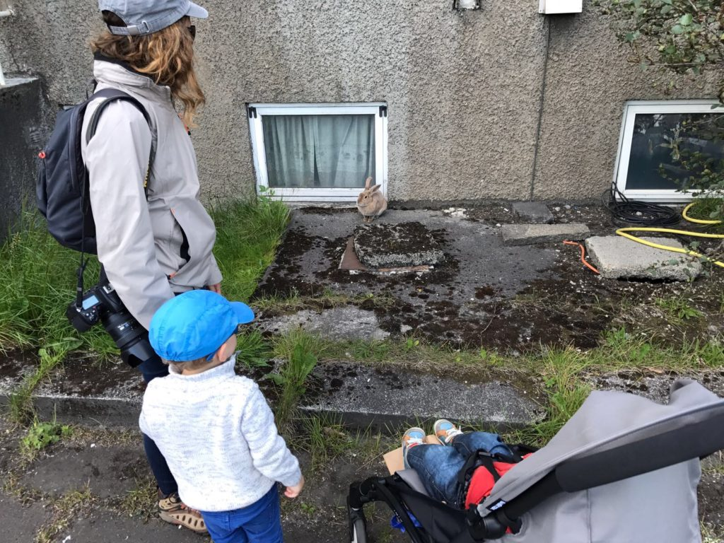 islande - voyager-enfants